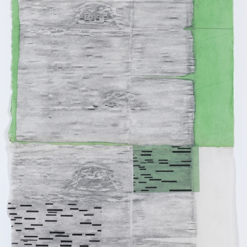 a rubbing by Maria Elena Gonzalez of a birch tree with green vellum added as collage