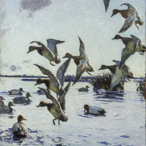 "FRANK WESTON BENSON (1862–1951), ""Redheads Lighting,"" 1924. Oil on canvas, 44 x 36 1/2 in. Detail."