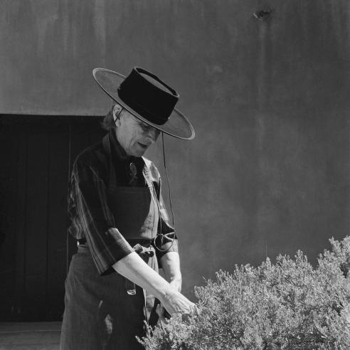 Georgia O'Keeffe: 1955-1981