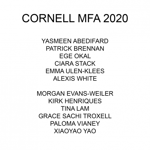 Cornell MFA Thesis Show 2020