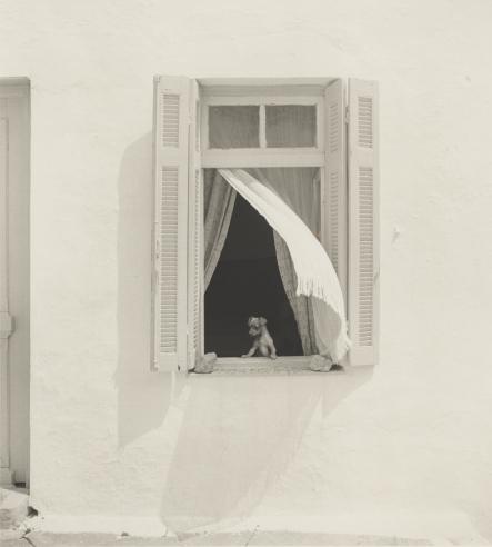 Pentti Sammallahti: Summertime