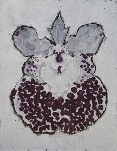 Orchis Tolumnia