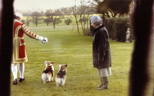 The Queen and Her Corgis 2