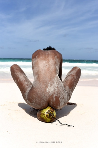 Wilmide Coconut