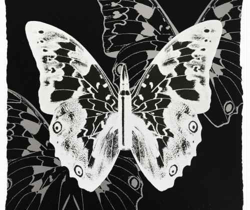 Metamorphosis by Rubem Robierb
