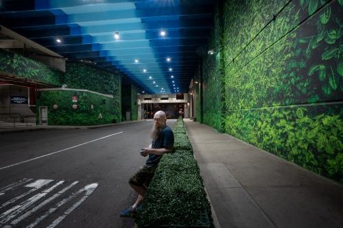 Taglialatella Galleries | Tunnel Vision by Logan Hicks