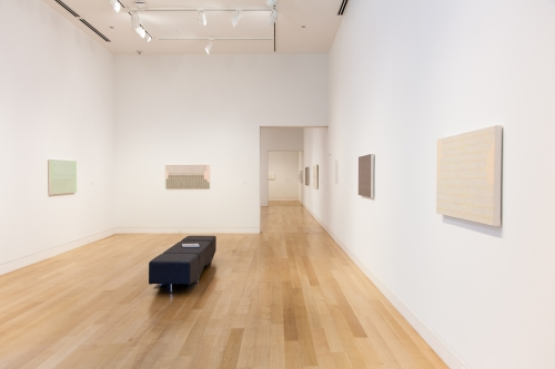 Curator's Tour: Julia Fish: bound by spectrum at DePaul Art Museum