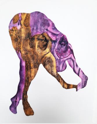 Alice Maher at Carwford Art Gallery, Cork, Ireland - Vox Materia