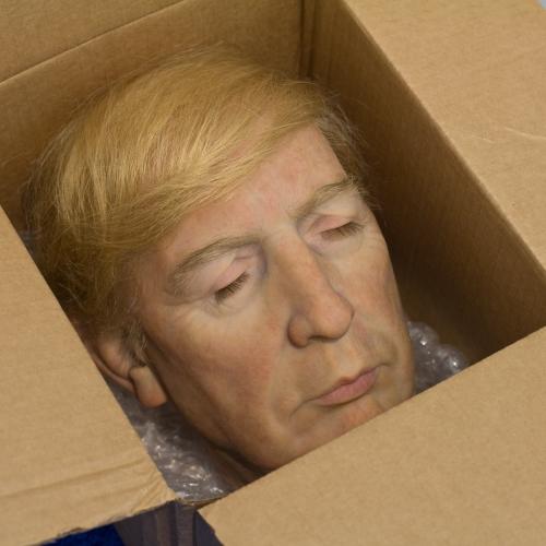 Donald Trump: Su Cabeza Dentro de una Caja Inflamable (Donald Trump: His Head in a Flammable Box)