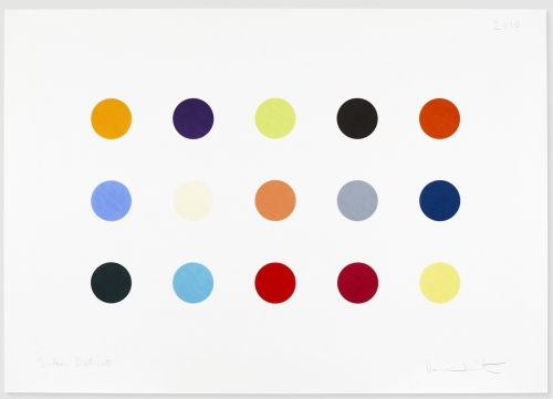 "Damien Hirst_Sodium Diatrizoate, 2010 (46 3:16"" x 66 3:16"")-Casterline Goodman Gallery.jpg"