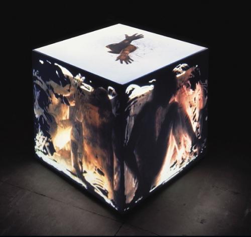 The Video Sculptures of Peter Sarkisian