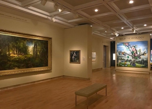 "Installation View, ""Eclectic Ecology,"" Cummer Museum 2020"