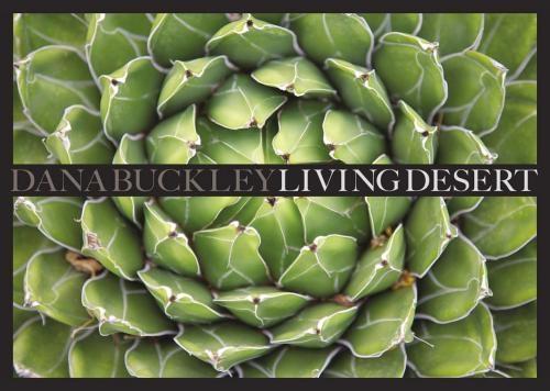 'Dana Buckley: Living Desert' at the Bruce Museum