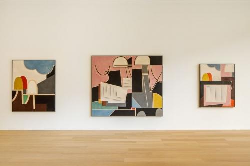 Rodney Graham | Vacuuming the Gallery