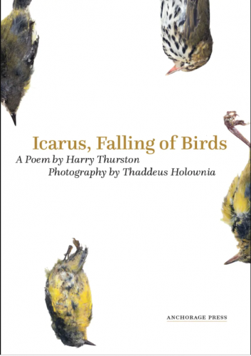 Thaddeus Holownia collaborated on book about birds