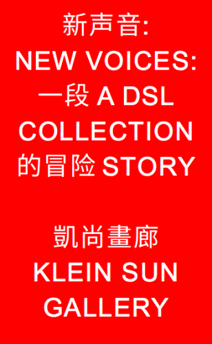 New voices: a dslcollection story