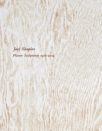 Joel Shapiro