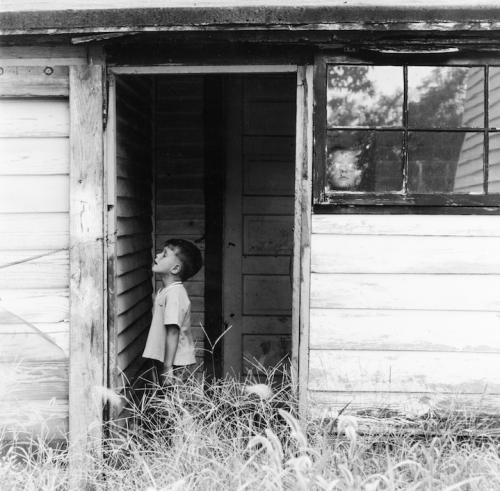 Kentucky Renaissance: The Lexington Camera Club and Its Community, 1954 - 1974