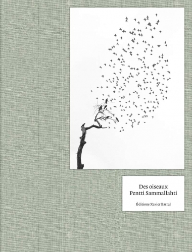Pentti Sammallahti: Des oiseaux