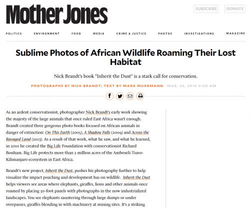 Nick Brandt: Sublime Photos of African Wildlife Roaming Their Lost Habitat - Mother jones