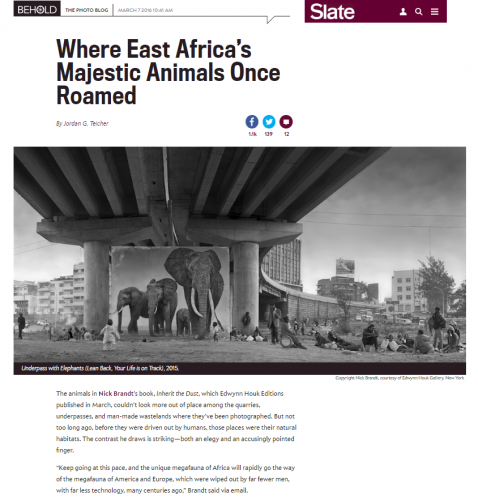 Nick Brandt: Where East Africa's Majestic Animals Once Roamed - Slate