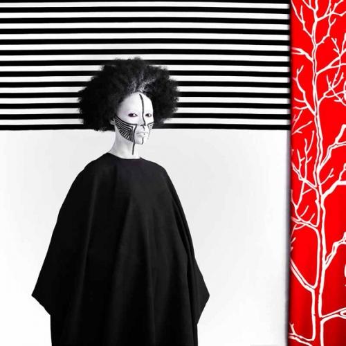 Blouin ArtInfo Highlights Aida Muluneh at AIPAD