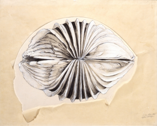 Jay DeFeo at The Menil Collection