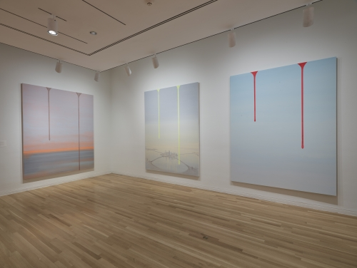 Wanda Koop, Dreamline, installation view at Dallas Museum of Art, 2019-2020.