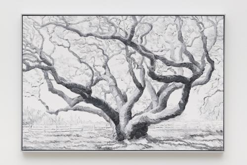 """Elegy (Hanging Tree),"" 2019"