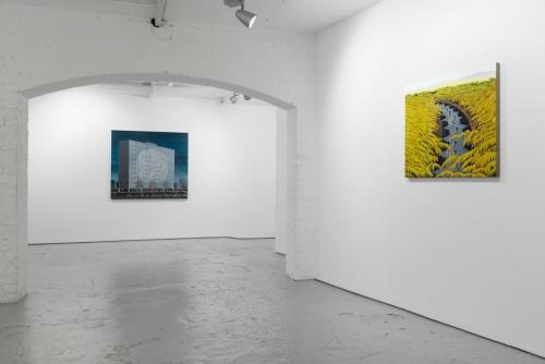 Expert Advice, installation view at Josh Lilley, London, United Kingdom, 2016.