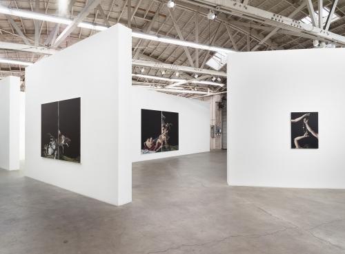 Syrinx, installation view, 2018.