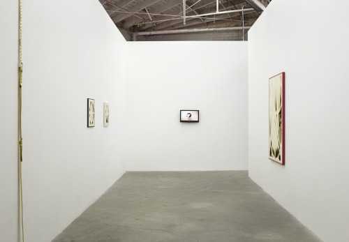 Catsuit for Men, installation view, 2014.