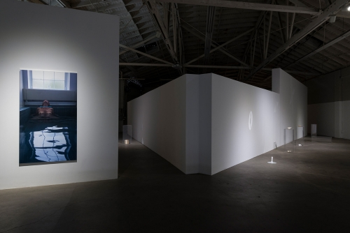 Cara Benedetto, The Descent of Woman, installation view, 2017.