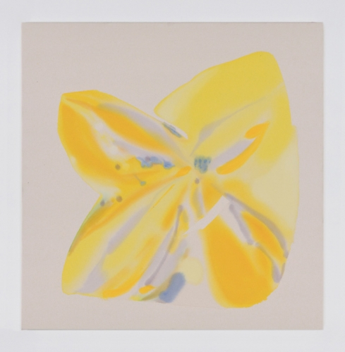 """Butterfly Vision (Yellow),"" 2015. Acrylic and aqua-oil on canvas. 40 x 39 in."