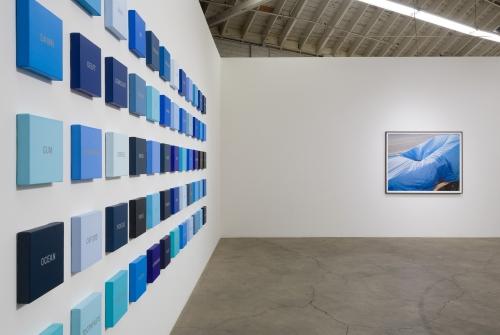 Blue State installation view, 2018.