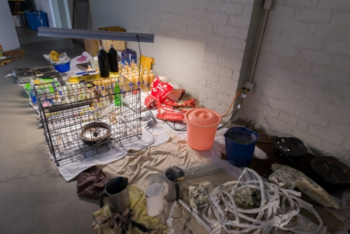 Drifting the Bog, installation view at Night Gallery, 2017