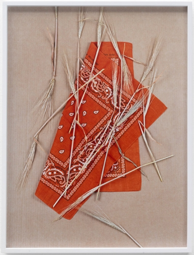 "Annette Kelm, ""Paisley and Wheat, Orange #1,"" 2013"