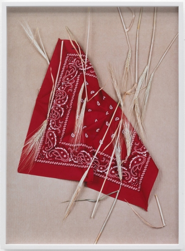 "Annette Kelm, ""Paisley and Wheat Red,"" 2013"