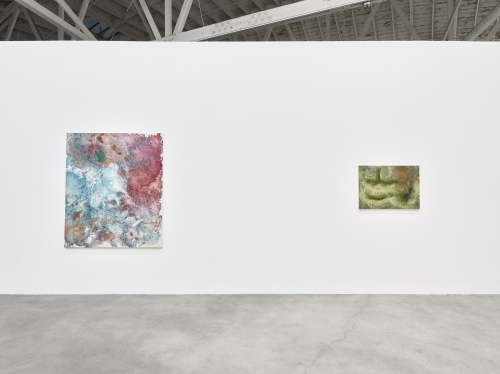 Rachelle Sawatsky, Toy Dust, installation view at Night Gallery, 2019.