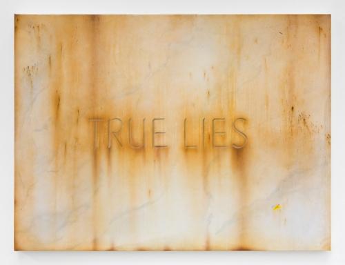"""Sayre Gomez, """"True Lies,"""" 2017"""
