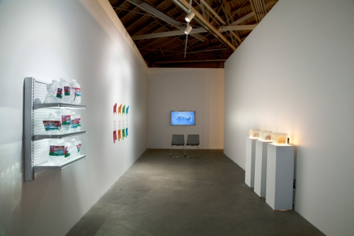 Installation view, Designed in California, 2013