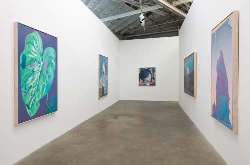 Jake Kean Mayman, The Earth Dies Screaming, installation view, 2017
