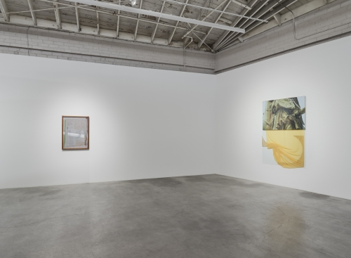 Installation view, Rose Marcus, FRONT, 2019.