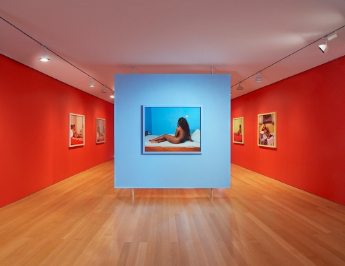 New Flower / Images of the Reclining Venus, installation view at FLAG Foundation, 2013