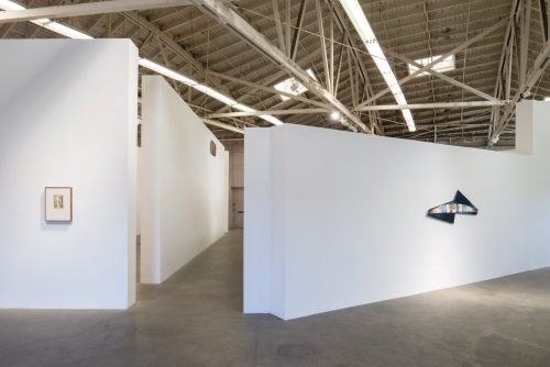 """Augustus Thompson, """"waxwing,"""" installation view, 2016"""