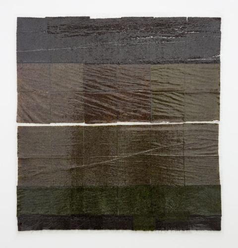 "Anne Libby, ""Lily Lamellar"", 2015, seaweed, laminate, plexiglass"