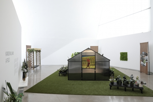 A Field, installation view, Institute For Contemporary Art at Virginia Commonwealth University, Richmond, VA, 2020. Photo by David Hale.