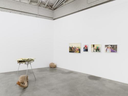 Delusionarium 5 (Adaptation), installation view, 2021
