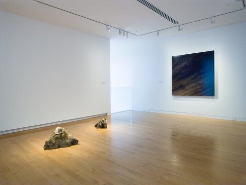 Weather Report, installation view at The Aldrich Contemporary Art Museum, October 6, 2019, to June 14, 2020. Photo: Jason Mandella