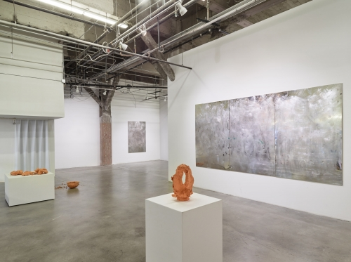LIFEFORCE, installation view at Harmony Murphy Gallery, 2016